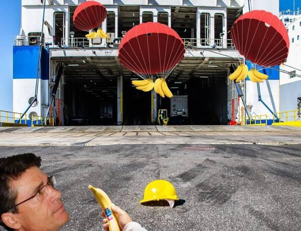 Presidente dell'Autorità Portuale Di Maio